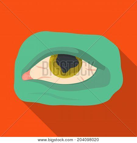 Eye single icon in flat style.Eye, vector symbol stock illustration .