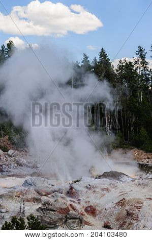 Steamin coming off a geyser in the Norris Geyser Basin in Yellowstone National Park