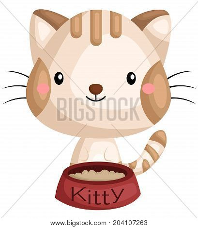 a cat with it's bowl of food