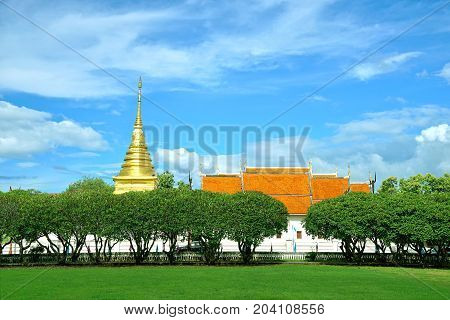 Row of pink Frangipani or Plumeria tree with golden pagoda and roof of he main hall of Wat Phra That Chang Kham on blue sky background. Nan province Northern Thailand
