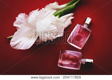 Perfume bottles with flowers on red background. Perfumery cosmetics fragrance collection.
