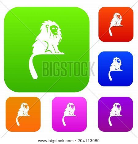 Hairy monkey set icon color in flat style isolated on white. Collection sings vector illustration