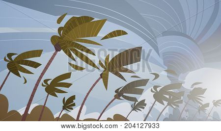Swirling Tornado In Sky Over Palm Trees Hurricane Huge Wind Storm Tropical Natural Disaster Concept Flat Vector Illustration