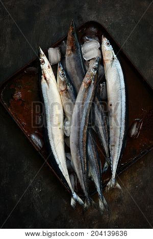Fresh chilled Pacific fish on a dark background