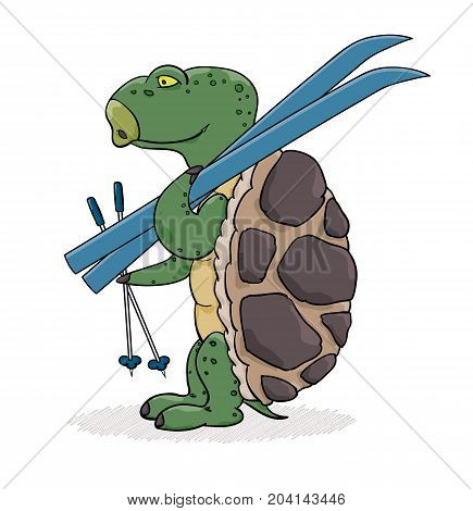 Turtle With Blue Skis Ready For Skiing.