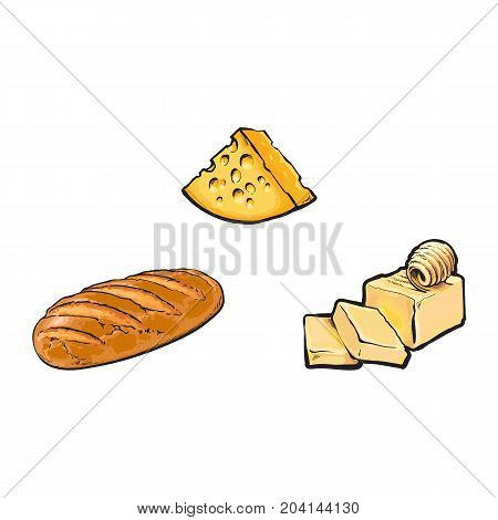 Vector sketch cartoon piece of porous cheese with holes, butter bar with slices, white bread loaf set. Isolated illustration on a white background. Healthy food dairy products, natural dieting concept
