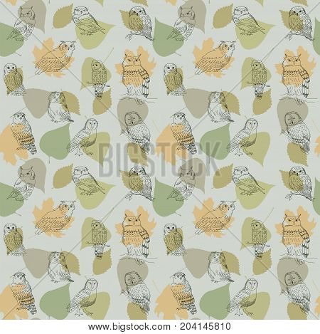 Seamless Pattern With Cute Drawing Owls On A Background Of Leaves