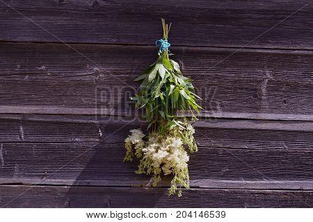 Medical plant meadowsweet Filipendula ulmaria bunch on old wooden barn wall
