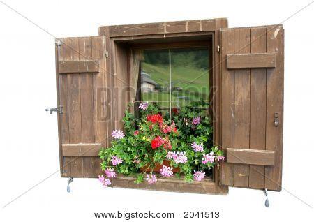 Welcoming Window