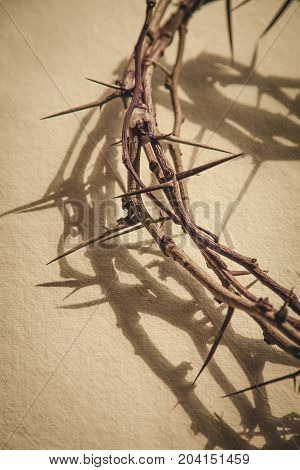 Background thorn crown thorns crown of thorns copy space new life