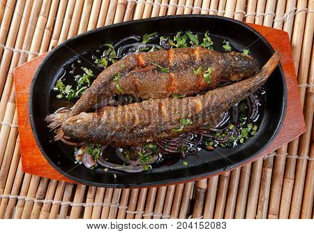 Grilled Trout .japanese cuisine  , сlose up