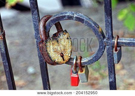 hinged old locks on iron fence rods