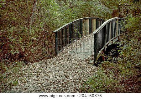 wooden foot bridge through the forest, retro look