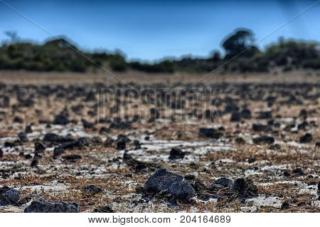 Arid rocky terrain in a very old dried up lake