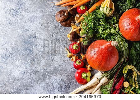 Variety of autumn harvest vegetables carrot, parsnip, chard, paprika, hokkaido pumpkin, porcini and chanterelles mushrooms over gray texture background. Fall harvest concept. Top view with copy space