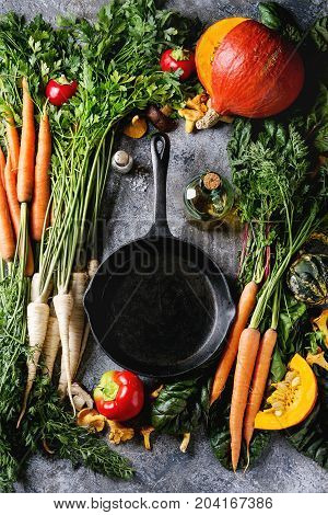 Variety of autumn harvest vegetables carrot, parsnip, chard, paprika, hokkaido pumpkin, mushrooms. Empty iron cast pan, olive oil, salt over gray texture background. Cooking concept. Top view