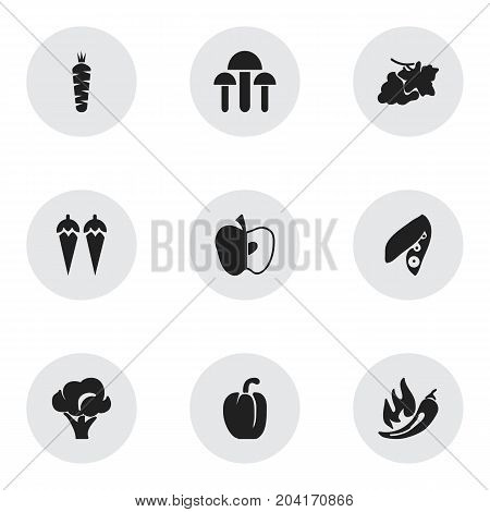 Set Of 9 Editable Dessert Icons. Includes Symbols Such As Paprika, Champignon, Chili And More