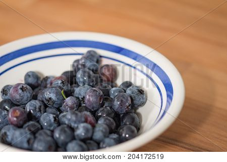 A bowl of fresh blueberries for a healthy pudding.