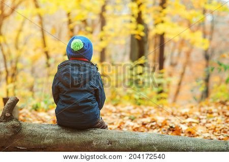Back View Of Little Boy Sitting On A Log In Autumn Park.