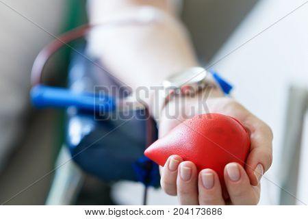 Young Caucasian Woman With Toy Heart In The Hand Donates Blood For Saving Lives And Medical Research