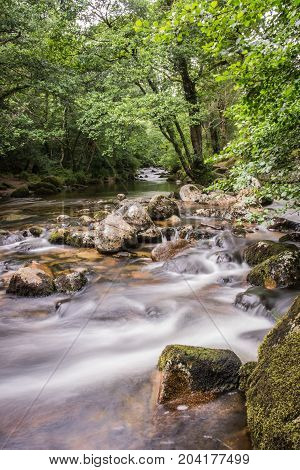 Merging of two rivers in ancient forest of Dartmoor National Park.