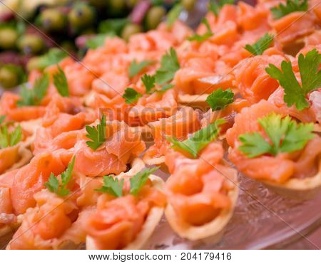 Tartlet with salmon . Shallow depth-of-field , close up cooked meal