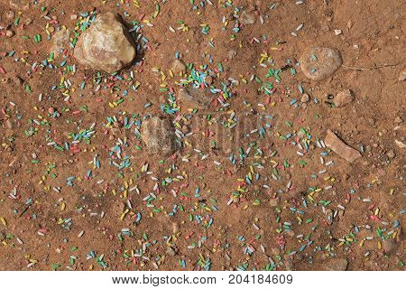 Worker ants gathering sweet colorful sprinkles. Abstract background.