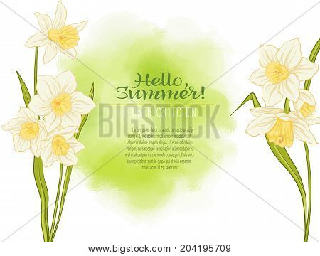 A narcissus flower on a green watercolor background. The flowers in the botanical style, minimalistic design. Place for the inscription. Hello summer Stock line vector illustration.