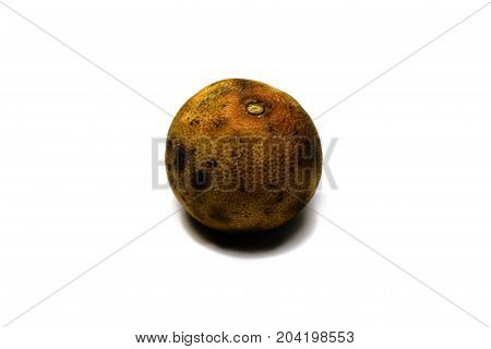 Rotten Old Lemon With Fungus On Brown Skin On White Background Isolated