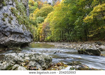 Rocky cliff along a stream in a gorge of colorful autumn foliage., Transylvania, Romania