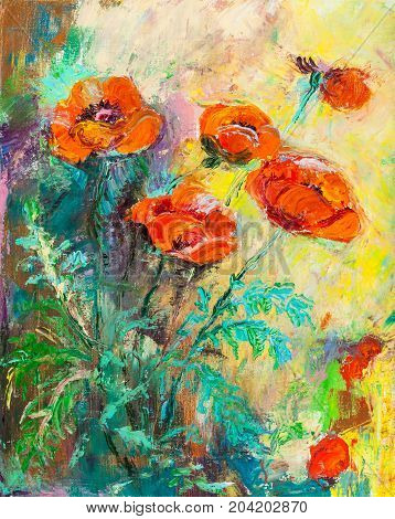Poppies on a bed, summer , oil painting