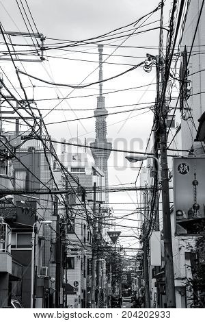 TOKYO JAPAN - MARCH 312012: Black and white picture of Tokyo city street with electrical wires and Sky Tree tower in the background