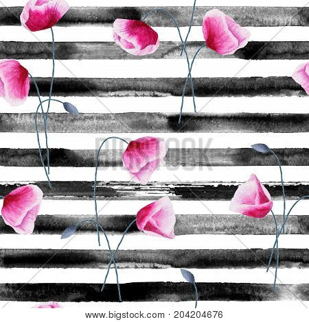 Watercolor hand drawn seamless pattern with black stripes and poppy flowers. Watercolor white and black background.