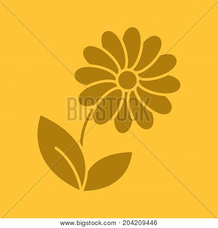Camomile glyph color icon. Silhouette symbol. Flower. Negative space. Vector isolated illustration