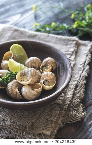 Bowl of cooked snails on the wooden background