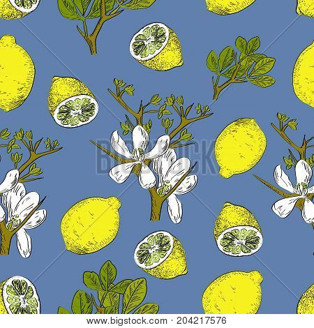 Vector Drawn Citrus Seamless Pattern On Blue Background With Lemons And Flowers In A Sketch Style. E