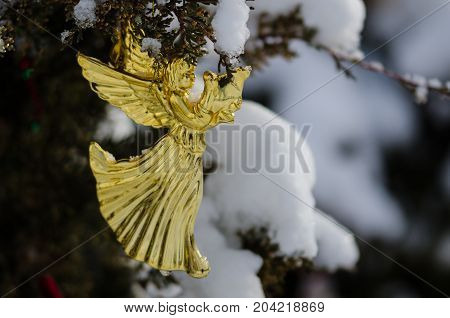 Golden Angel Christmas Ornament Decorating a Snowy Outdoor Tree