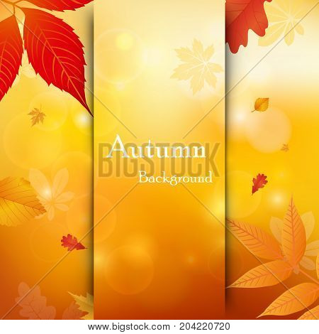 Vector background of falling autumn leaves. Autumnal foliage fall and leafs flying in wind motion blur. Templates autumn design for cards banners flyers posters.