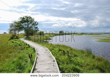 Wooden footbridge crossing a wetland in a nature reserve at the swedish island Oland
