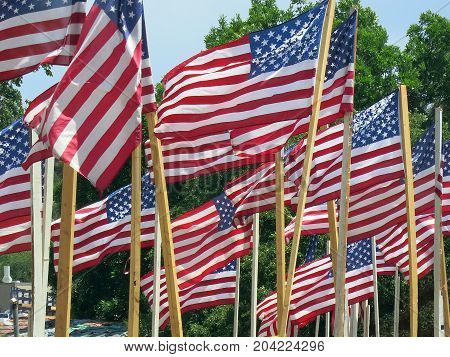 Wavering american flags on fourth of jjuly
