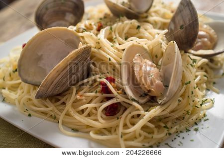 Spaghetti with fresh cooked baby clam sauce on rustic wood table