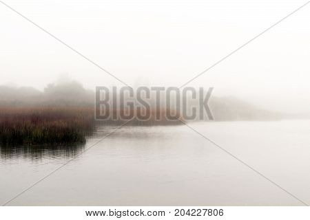 Moody, misty morning over a lake with marsh grasses.