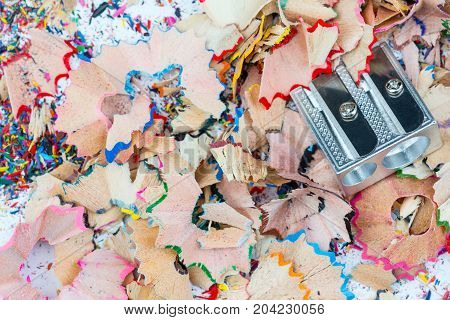 Shavings and metal sharpener on grey background