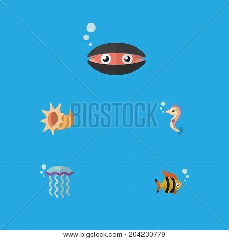 Flat Icon Marine Set Of Seafood, Scallop, Medusa And Other Vector Objects
