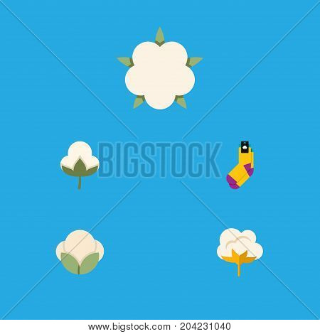 Flat Icon Cotton Set Of Bud, Cotton, Hosiery And Other Vector Objects