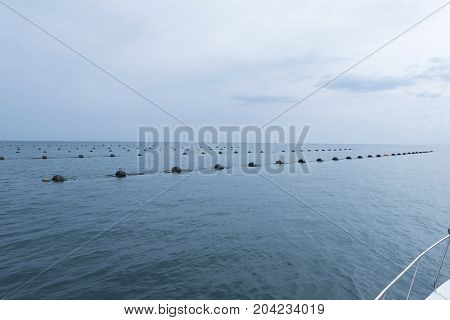 Mussel Farm Sea Food Rope Sea Gull