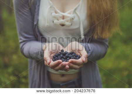 Blueberries In Woman Hands In Forest. Fresh Blueberries In Hands. Hands Full Of Blueberries. Woman T