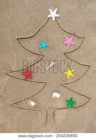 Christmas tree drawing in beach sand with colorful starfish and seashells