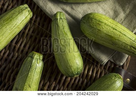 Green Speckled Organic Mexican Squash