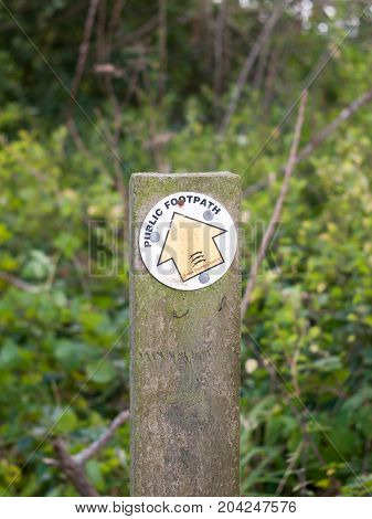 Close Up Of Wooden Post Essex Walking Path Trail Sign Yellow Arrow